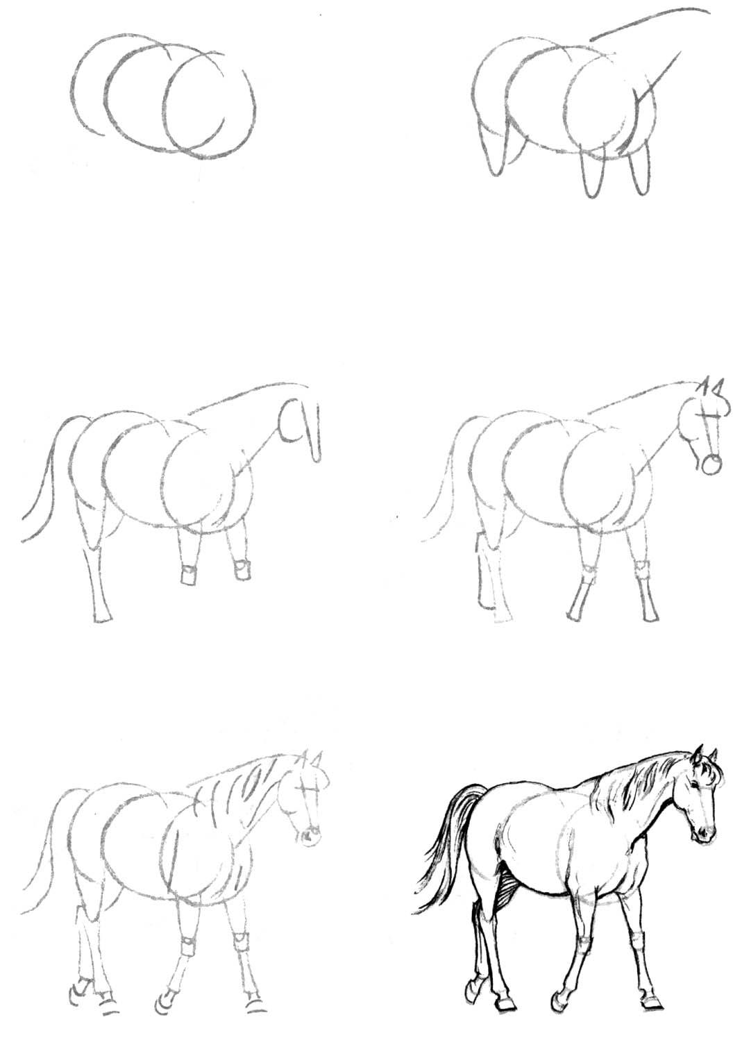 Учимся рисовать простым карандашом ...: mylovehorse.narod.ru/drawpencil.html